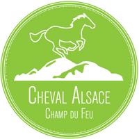 cheval-alsace-01